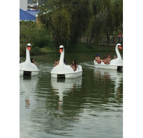 The Large Swan Hydro-pedalo